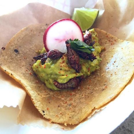 Taquiza: Tacos de Chapulines